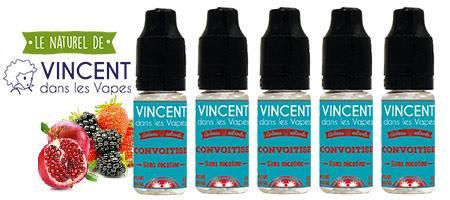 lot de 5 e-liquides Vincent dans les vapes Convoitise : fruits rouges et grenade naturels